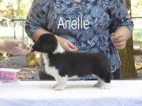 Arielle-side 4