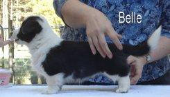 Belle-side-2