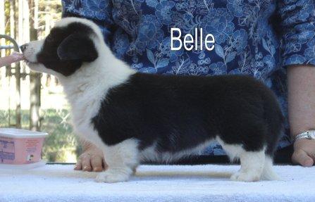 Belle-side-3