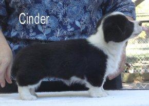 Cinder-R-side-1