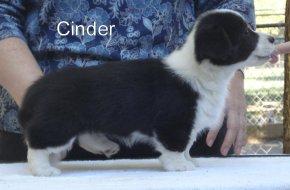 Cinder-R-side-2