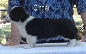Cinder-side-1