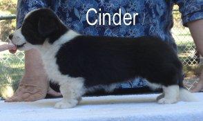 Cinder-side-2