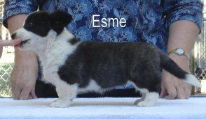 Esme-2
