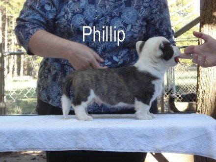 Phillip-R-side