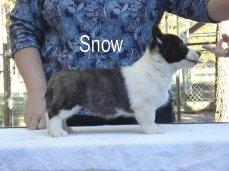 Snow-R-side-2