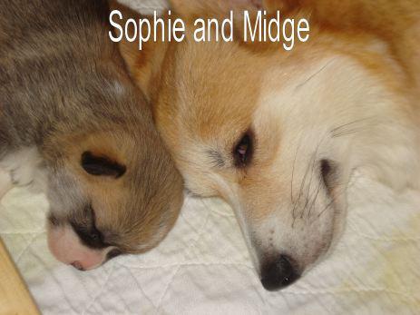 Sophie and Midge