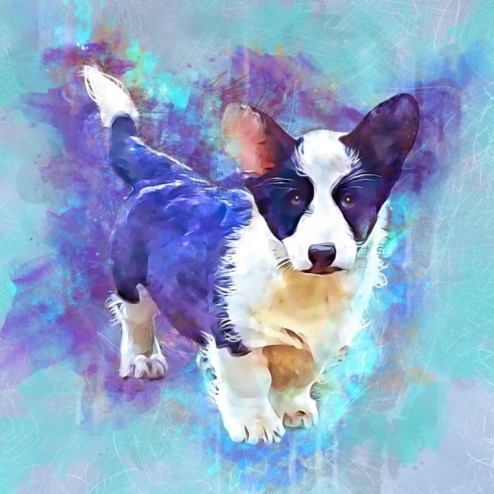 Greta - Puppy