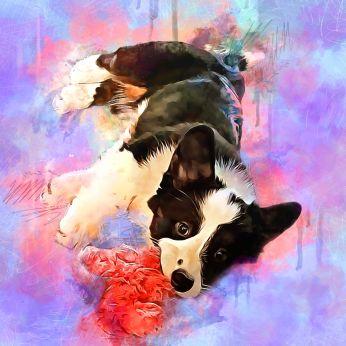 Liz- Puppy Toy
