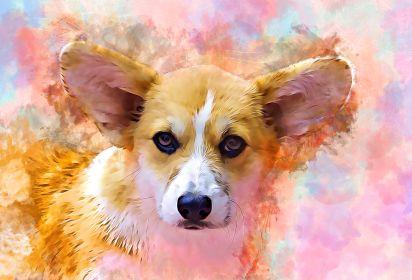 Rosie- Puppy